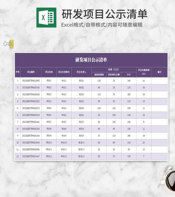 紫色研发项目公示清单Excel模板