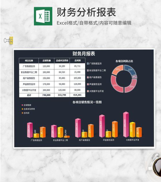 公司项目利润财务月报表Excel模板