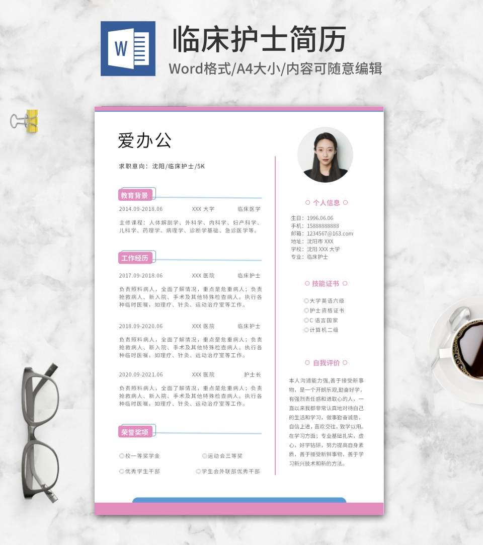 蓝粉色线条临床护士简历word模板