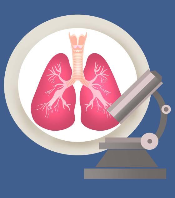 显微镜肺结核元素