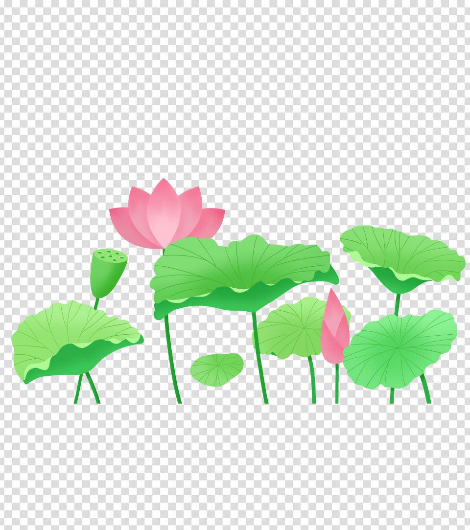 绿色卡通手绘荷叶荷花元素