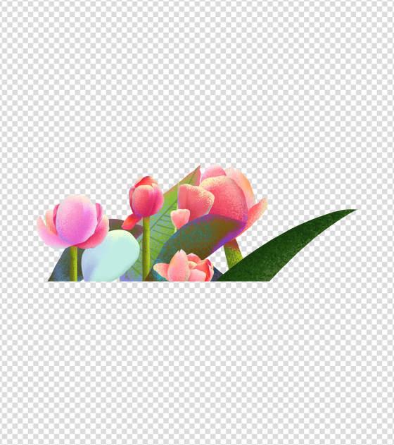 2362x2362pt_ppt原创手绘花卉