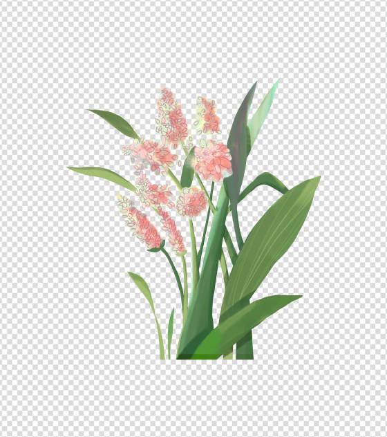 2362x2362pt_ppt原创小清新手绘花卉